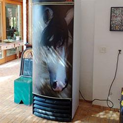 Envelopamento de geladeira com imagem de Cavalo