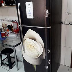 Envelopamento de geladeira com imagem de Rosa Branca - Jardim Monte Kemel - SP